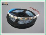 1 이중 색깔 SMD5050 LEDs 점화에 대하여 2를 가진 White+Warm 백색 CCT 조정가능한 LED 유연한 지구 12V