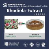 De Oplosbaarheid van het water 100% Natuurlijk Uittreksel van Rhodiola Rosea