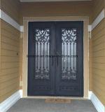 Costume exterior e projeto de aço das portas de entrada do ferro decorativo