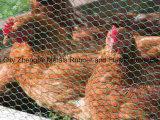 Rede de fio galvanizada da galinha do engranzamento de fio da alta segurança venda quente sextavada
