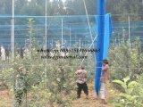 HDPE 반대로 새 그물 공장