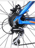 こんにちはKenda TireのQuality Mountain Bike