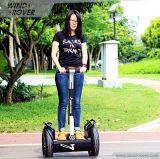 Mobilitäts-Roller-erhältlicher Wasser-Roller 1600W