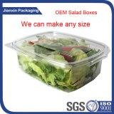 Recipiente de empacotamento da salada descartável transparente