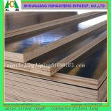 Matériaux de construction de panneaux Contreplaqué professionnel pour meubles
