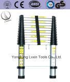 Ausgezeichnete Qualitätsaluminiumextensions-Strichleiter von 12steps