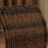 [جبنس ستل] أثاث لازم وقت فراغ كرسي تثبيت لأنّ يعيش غرفة [أ03-13]