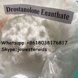 男性の増強物CAS 472-61-145の白い結晶状の粉のためのBodyglittering Drostanolone Enanthate