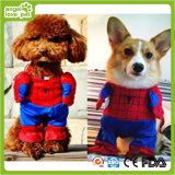 O animal de estimação do Spiderman veste a roupa do jogo do papel do animal de estimação