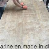 vidoeiro natural da classe de 18mm C/D para a colagem da decoração E1