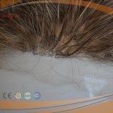 [بروون] لون عامّة خفيفة [بلوند] لون سمكة شبكة نوع [هي ند] [هندتيد] شريط جبهة لمة