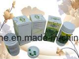 100% natürliche abnehmenkapsel - Gewicht-Verlust Hoodia Gordonii