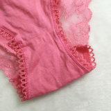 Cordón atractivo Undie de Panty del algodón de las mujeres al por mayor de Fushia