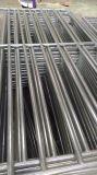 Cerca residencial personalizada do ferro de /Metal da cerca do jardim da cerca/ferro de segurança (fábrica)
