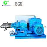 800L/H는 저온 펌프 범위 PLC 통제 시스템 L-CNG 흐른다