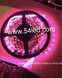 lumière de bande de 12W SMD 2835 DEL