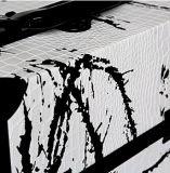 Caso carreg do curso cosmético branco novo do projeto com frame de alumínio preto resistente