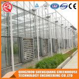 농업 판매를 위한 최신 직류 전기를 통한 강철 프레임 PC 장 온실