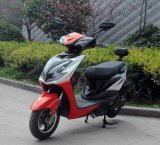 Motocicleta elétrica de 1000W, bicicleta elétrica, scooter elétrico