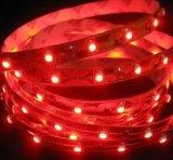 Tira clara flexível do diodo emissor de luz cor múltipla branca/branca de RGB+Warm