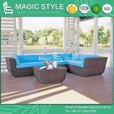 Insieme del sofà del giardino con il sofà dell'angolo del rattan dell'ammortizzatore impostato (stile magico)