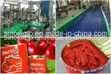 Sauce tomate en boîte 2000g, 3000g, 4000g ligne entière machines de production