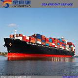 Перевозка груза моря контейнера FCL от Shenzhen к Франции