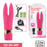 Navulbare Vibe, 7-functie, het Stuk speelgoed van het Geslacht voor Vrouwen of Paren, AV Massage, de Volwassen Fabrikant van Producten
