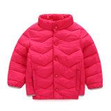 Dongguan Dandan projetou recentemente as crianças que vestem Thicked morno reveste para baixo