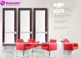 De populaire Stoel Van uitstekende kwaliteit van de Salon van de Kapper van de Shampoo van het Meubilair van de Salon (P2025C)