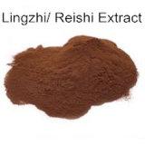 Polysaccharides Lingzhi 100% d'extrait de Reishi d'extrait de Ganoderma Lucidum pur