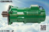 Alta calidad de Brima 0.25kw sin el motor engranado grúa eléctrica del almacenador intermediaro (BM-030)