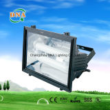 40W 50W 60W 80W 85W lampe à induction lampe à inondation