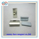 ブロックの形および希土類磁石の合成のネオジムの磁石