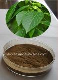 Выдержка фармацевтических и химического исследования хлорогеновая кислоты 10%~ 98% Eucommia Ulmoides
