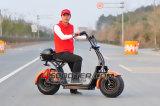 성인 전기 스쿠터 도시 코코야자를 위한 2000W 최신 판매 새 모델