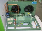 20HP sondern Bitzer 4ge-23y mittleres niedrige Temperatur-Kondensator-Gerät aus