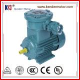 Motore (elettrico) elettrico di induzione protetta contro le esplosioni di monofase