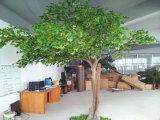 Green Leaves Artificial Maidenhair Tree (para decoração interior e exterior)