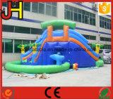 子供のための二重プールが付いている巨大で膨脹可能な水スライド