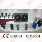 Unità di condensazione per il congelatore ad aria compressa/la cella frigorifera