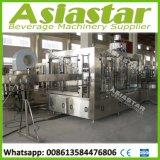 Machine de remplissage de boisson de jus de bouteille d'animal familier (RFC18-18-6)