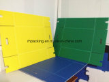 Коробка коробки Manufacturer/PP Coroplast коробки фрукт и овощ полипропилена PP пластичная складывая