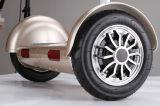 Самокат франтовского баланса собственной личности 2 колес электрический с рукой