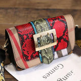 온라인 쇼핑 대중적인 어깨에 매는 가방 뱀 피부 PU 여자 여자 마약 밀매인 핸드백 Sy7911