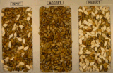 Sorteerder van de Kleur van de Zaden van de Pompoen van de Machine van de Verwerking van het Voedsel van Vsee RGB