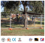 Clôture temporaire Clôture métallique pour sécurité et amovible