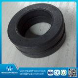 starker Magnet-Ring-Magnet des Ferrit-3D für industrielles