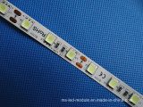 Atacado Colorful 5054 DC12V 2 Warranty Waterproof LED Strips