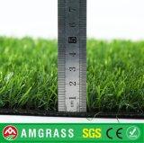 Естественная трава футбола и синтетическая трава для сада